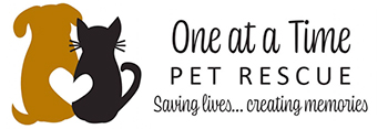 One at a Time Pet Rescue